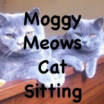 Moggy Meows Cat Feeding & Sitting